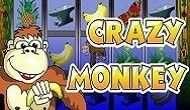 Игровой автомат Crazy Monkey онлайн